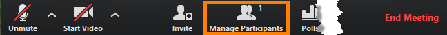 Zoom Manage Participants button on the main toolbar highlighted.